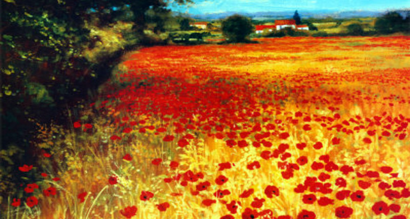 Poppy di Steve Thoms